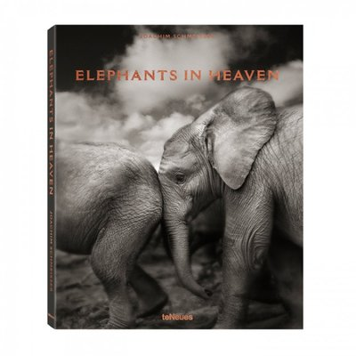 Joachim Schmeisser, Elephants in Heaven